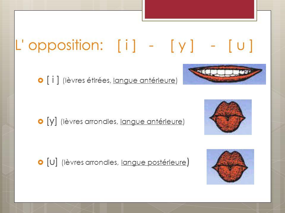 L opposition: [ i ] - [ y ] - [ u ]